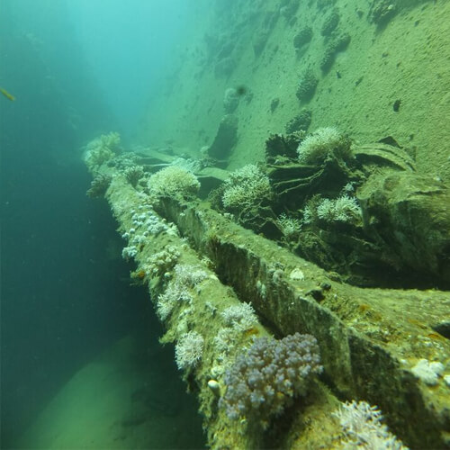 Million Hope Wreck, Strait of Tiran